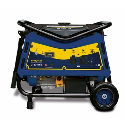 Generador Eléctrico Profesional 4T 220V 5500W