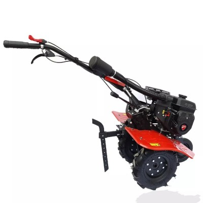 Motocultor Motoazada Ducati...